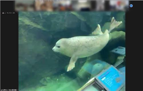 「動物から学ぶいのち」旭山動物園×SEISA特別授業シリーズ最終回2